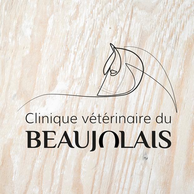 Clinique vétérinaire du beaujolais : Identité visuelle, print, Web design & développement